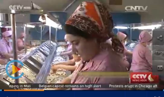 turkmenistan silk