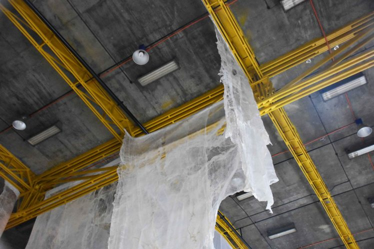 Blood on Silk Last Seen _3 web