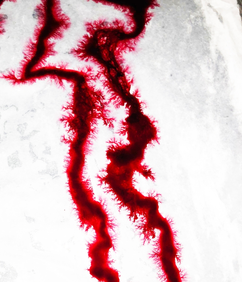 Blood on Silk Bleeding Out as Imaged 2 .jpg
